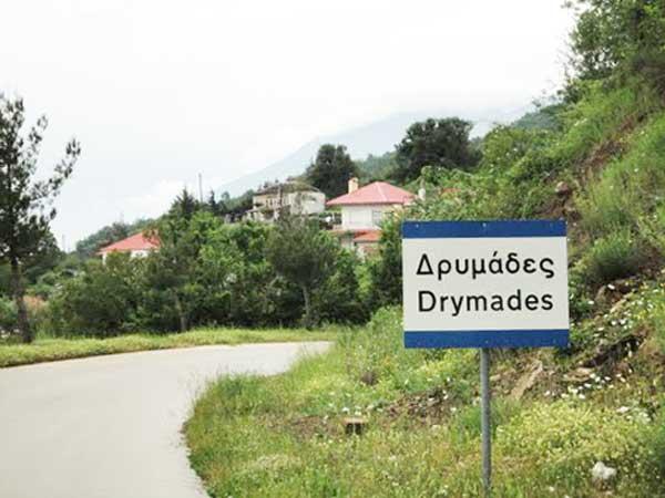 DRYMADES PINAKIDA